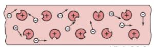 các hạt electron